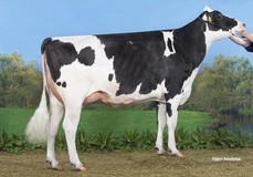 A-L-H Moviemax VG-85