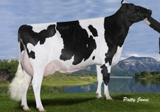 Gen-I-Beq Goldwyn Secret RC VG-87